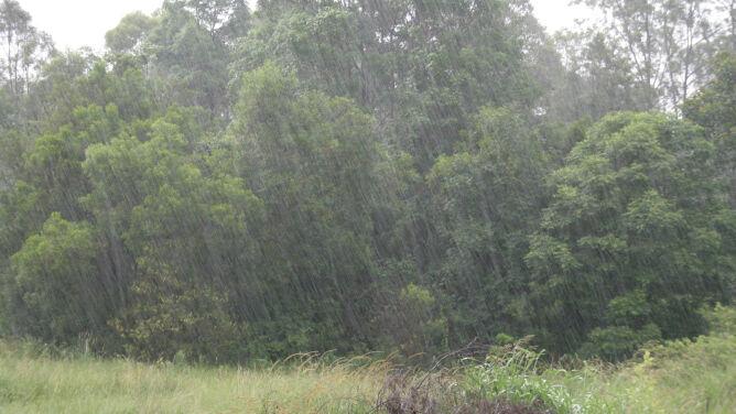 Prognoza pogody na dziś: większość kraju pod znakiem deszczu