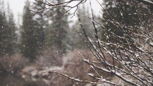 Pogoda na dziś: silniejszy wiatr i zimowe opady